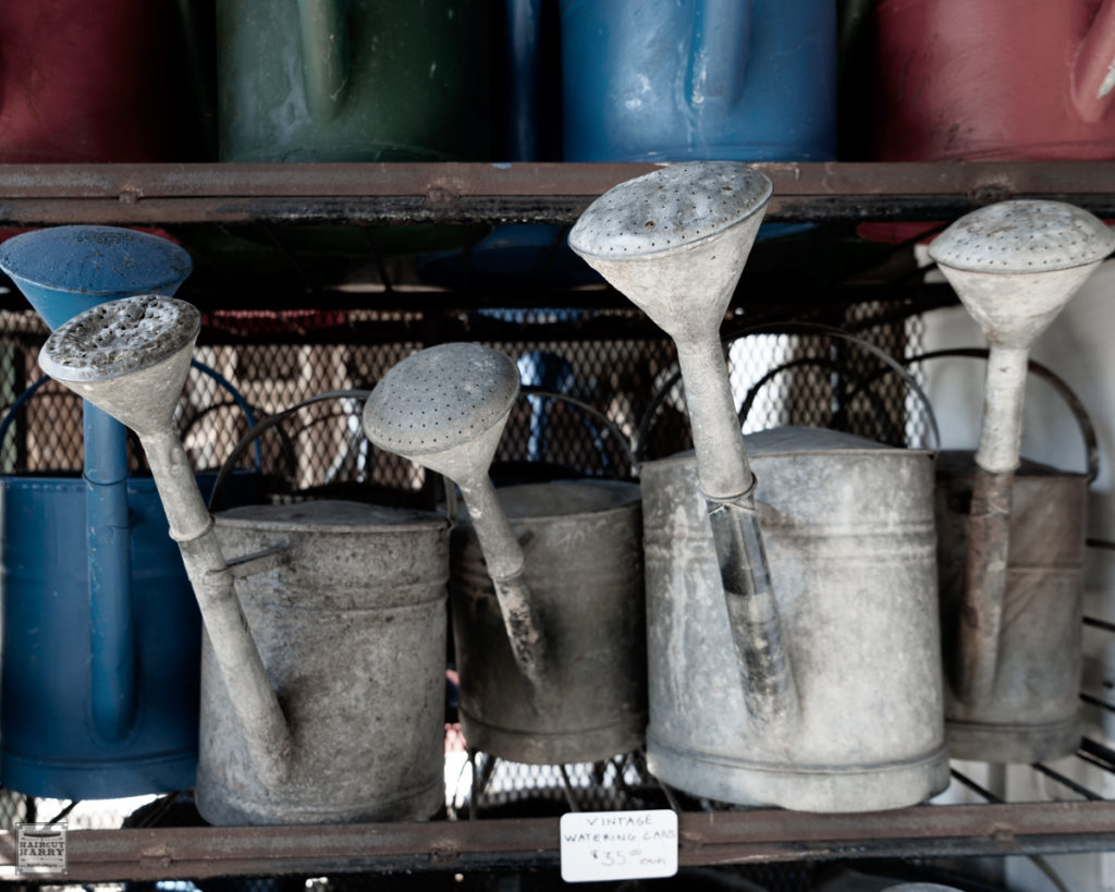 Rows of vintage watering cans for sale at Architectural Salvage of San Diego