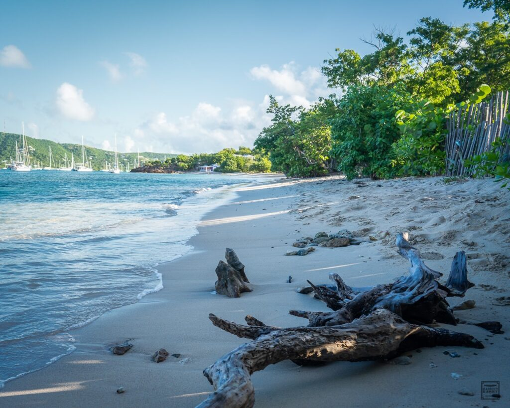 View of Pigeon Beach in the morning